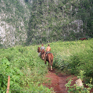 Horse ride through Los Mogotes