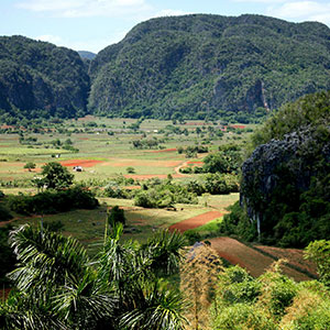 Picture of Excursion to Vinales